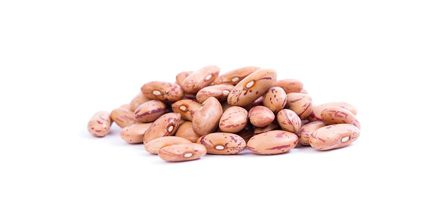 beans_macro